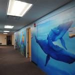 custom-suites-gallery